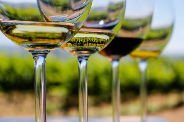 Vineyard in a glass