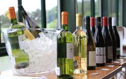 160405_ワインパーティー01