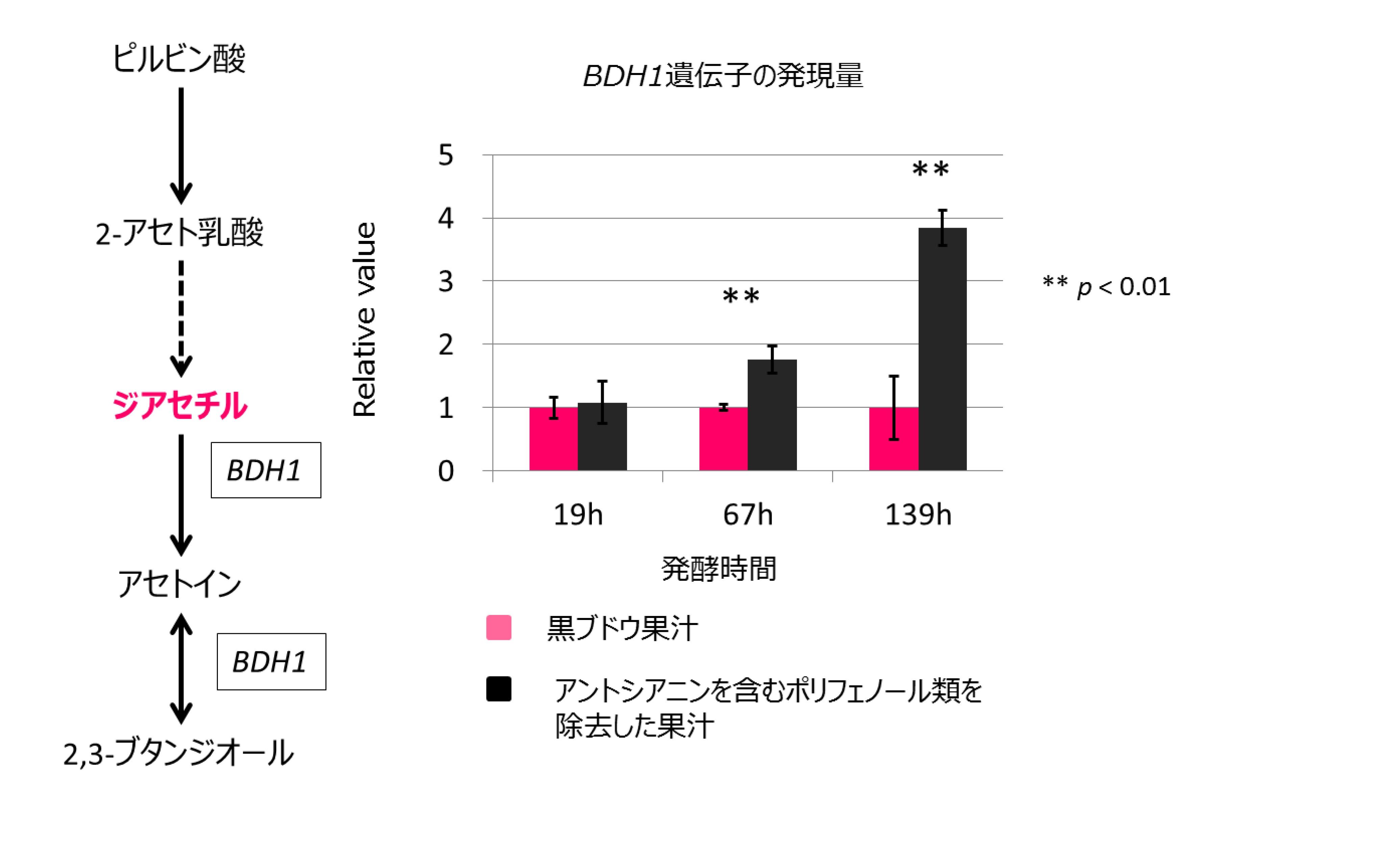 161010_%e3%82%a2%e3%83%b3%e3%83%88%e3%82%b7%e3%82%a2%e3%83%8b%e3%83%b3
