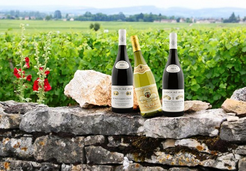 vins-terroir-excellence-laboure-roi