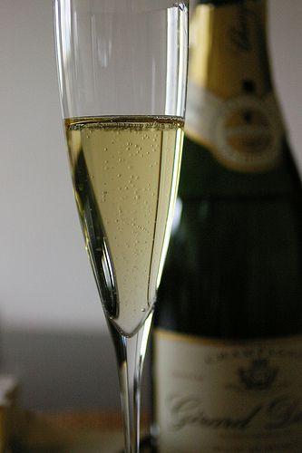 Champagne, GERARD DUBOIS -GRAND CRU-, Blanc De Blancs, BRUT, Chardonnay