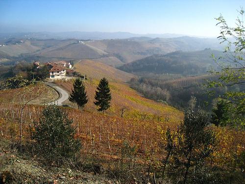 on the walk from monforte d'alba to serralunga d'alba
