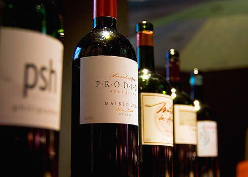 Wine at The Vines of Mendoza