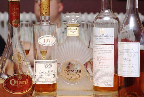Cognac-tasting line-up