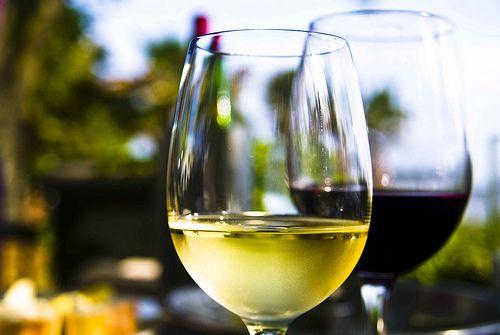 Wine at Saltus