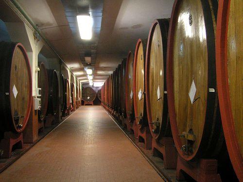 wine vats at winery alghero