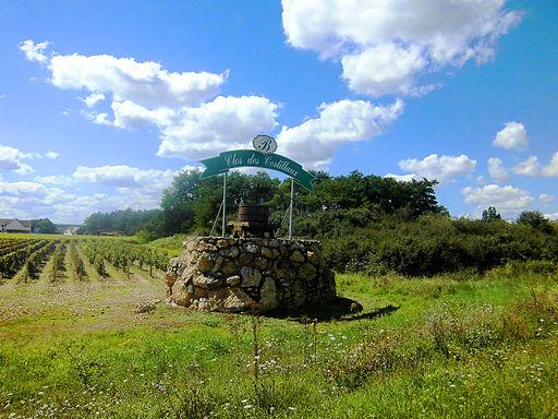 AOC coteaux-du-giennois Clos des Cortillaux