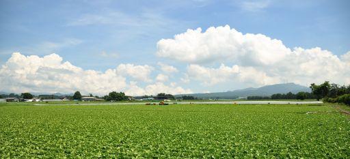 Japan - Gunma, Showa 2010 2 (4882257252).jpg