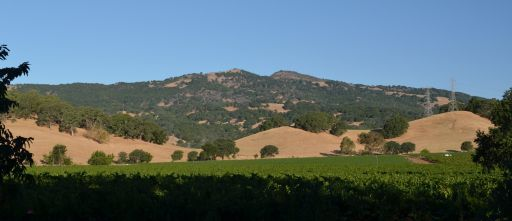Twin Sisters from Suisun Valley.jpg